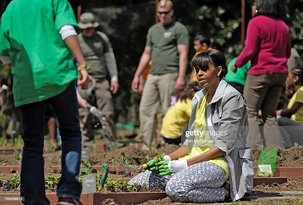 U.S. first lady Michelle Obama plants the White House Kitchen Garden on the South Lawn of the White House April 4, 2013 in Washington, DC. For the fifth time, the first lady invited students from 'schools that have made exceptional improvements to school lunches' from Florida, Massachusetts, Tennessee and Vermont to help her plant the garden.