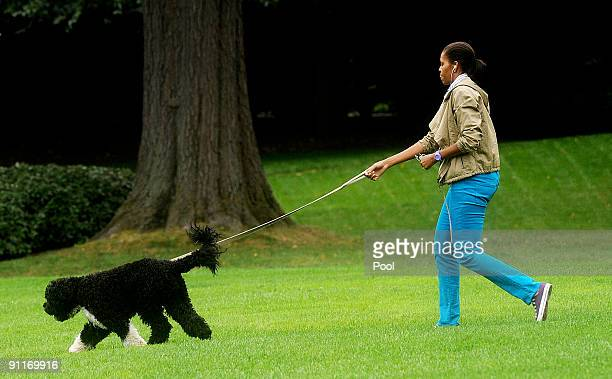 First Lady Michelle Obama walks the family dog Bo on the South Lawn of the White House on September 26 2009 in Washington DC Obama had just returned...