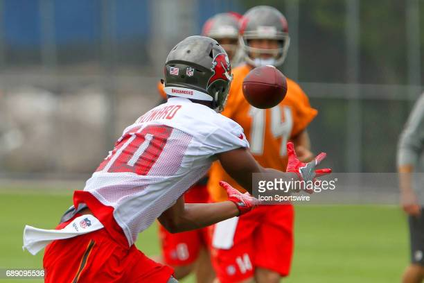 2017 first round pick O J Howard extends his arms to make the catch from quarterback Ryan Fitzpatrick during the Tampa Bay Buccaneers OTA on May 25...