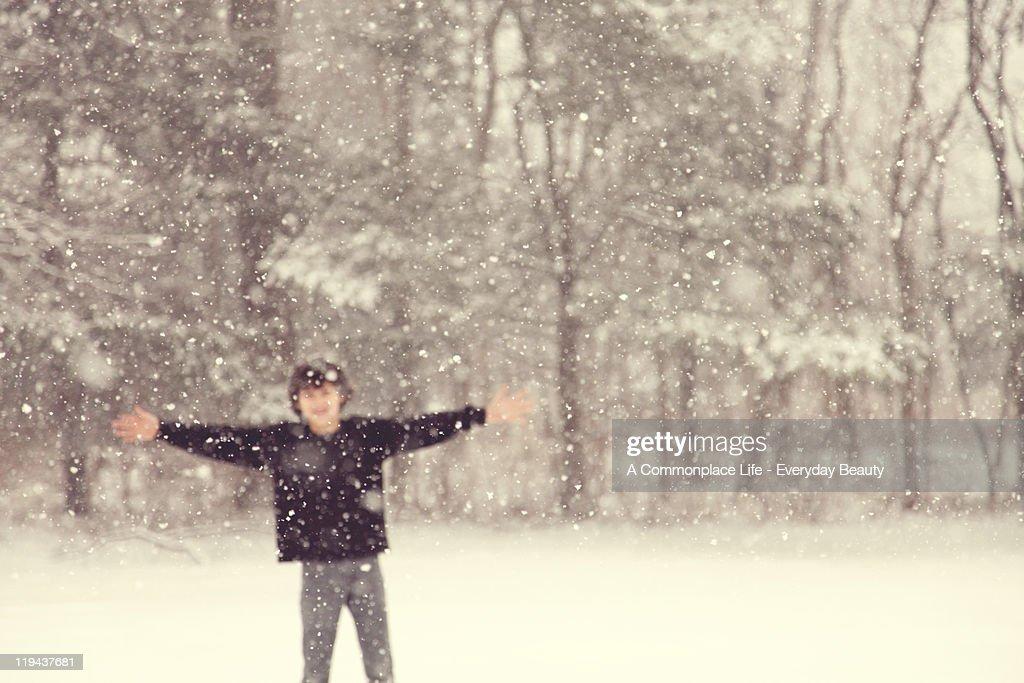 First  snowfall : Stock Photo