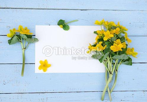 Primera Primavera Flores Amarillas Flores Silvestres Con Papel En