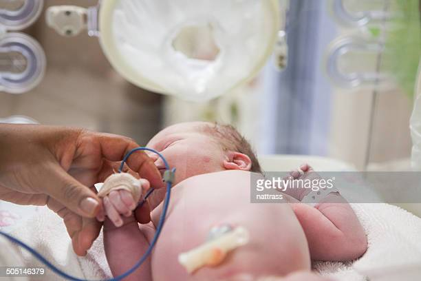First touch - newborn in her cot