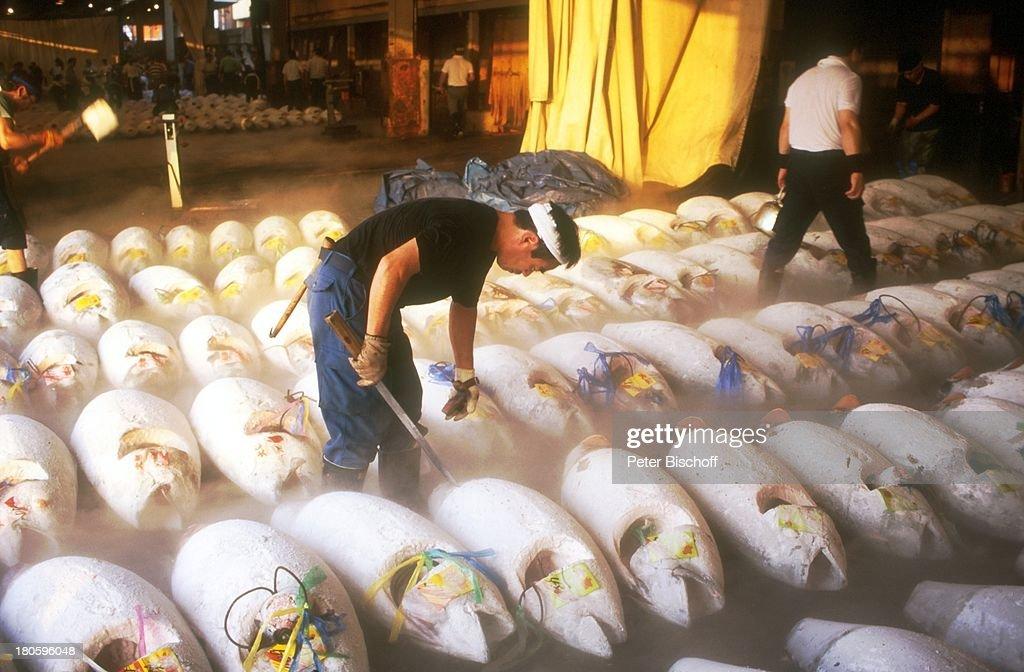 Fischmarkt 'Tsukiji', (groeßter Fischmarkt der Welt), japanischer Fischhaendler, Tokio/Japan/Asien, Reise, in der Halle fuer Versteigerung der Fische, Thunfisch,