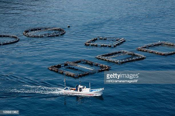 Fish farm and nautical vessel