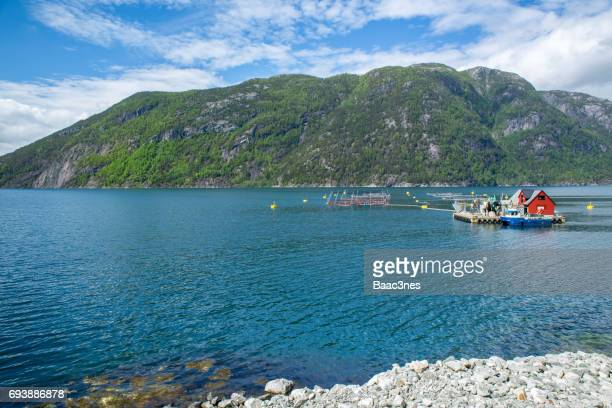 Fish farming in Norway