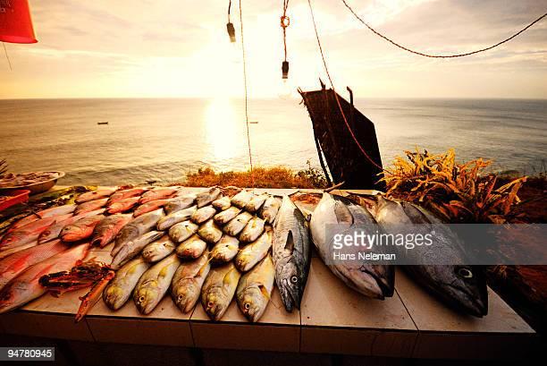 Fish for sale at a market stall, Varkala, Kerala, India