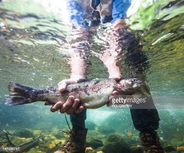 Fish Held Underwater