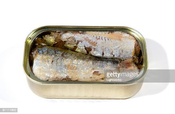 Fish in a can