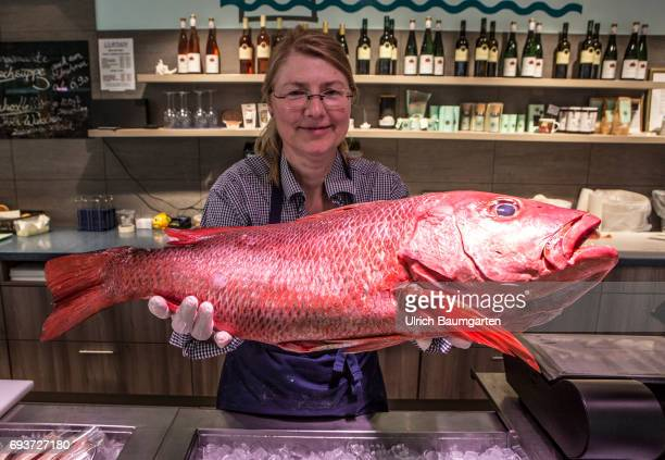 Fish increasingly popular with many consumers Saleswoman in a Bonn fish shop with a Red Snapper