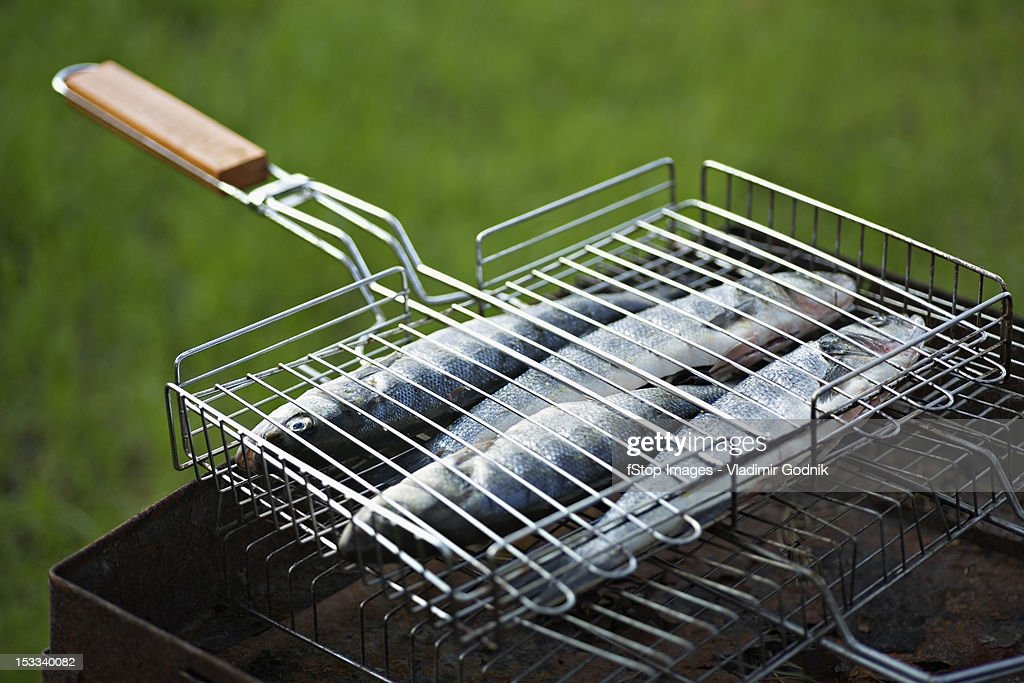 Fish on a barbeque grill : Stock Photo