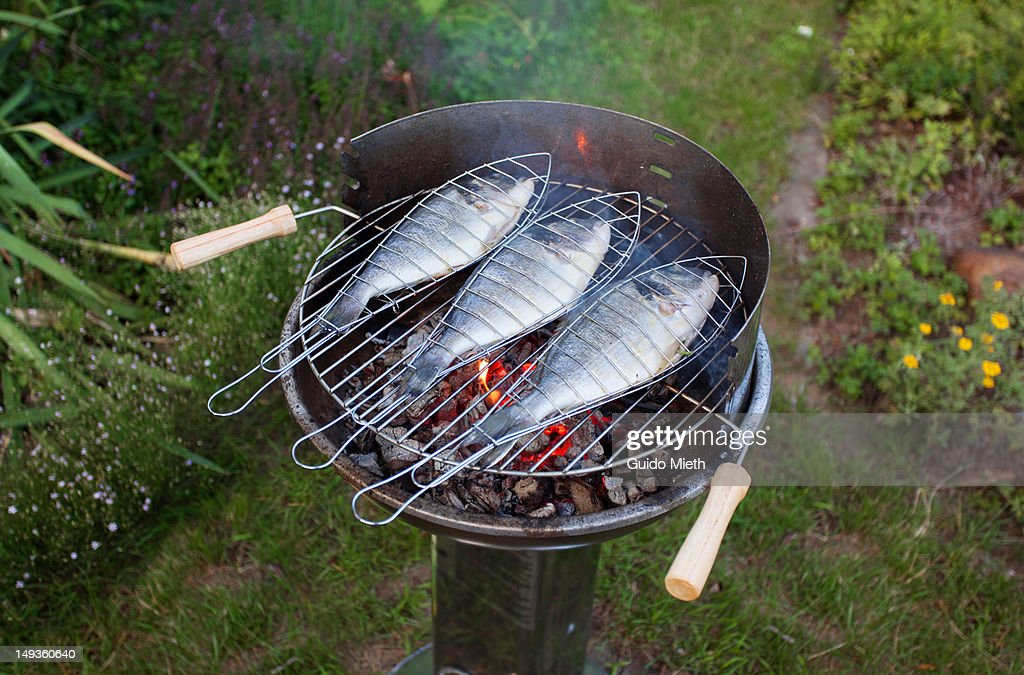 Fish on open flame grill : Stock Photo