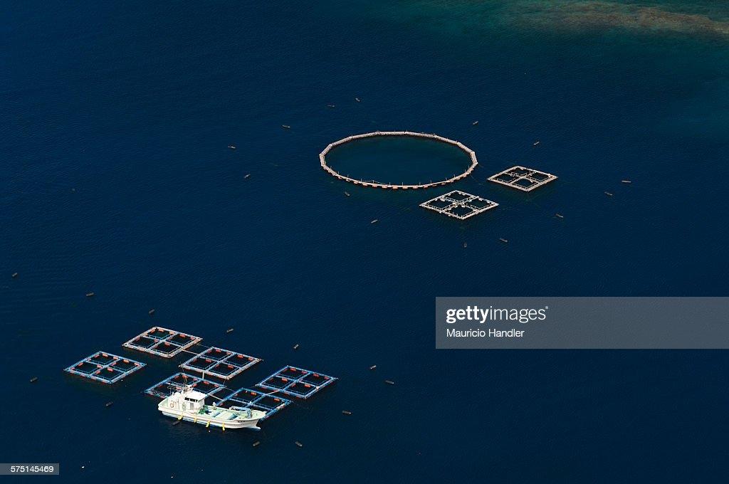 Fish pens off Chichi-Jima Island.