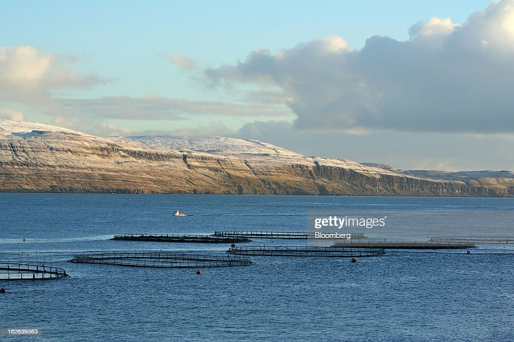 Fish pens sit in the water near Torshavn, the capital of the Faroe Islands, under the sovereignty of Denmark, on Tuesday, Dec. 4, 2012. A proposed plan would decipher the complete DNA sequence of the 50,000 citizens of this tiny, windswept land halfway between Scotland and Iceland, from its fishermen to the prime minister. Scientists already see the Faroes becoming a model for the use of human genomes. Photographer: John Lauerman/Bloomberg via Getty Images