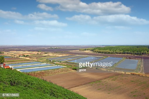 fish pond aerial view agriculture : Stock Photo
