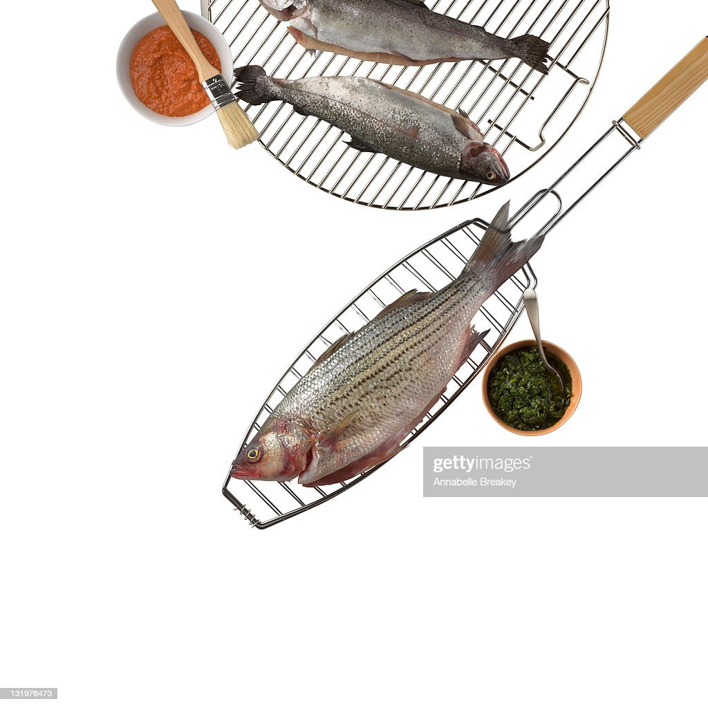 Fish Ready to Grill : Stock Photo