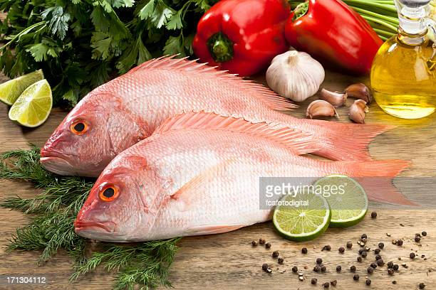 Fish: Red Snapper