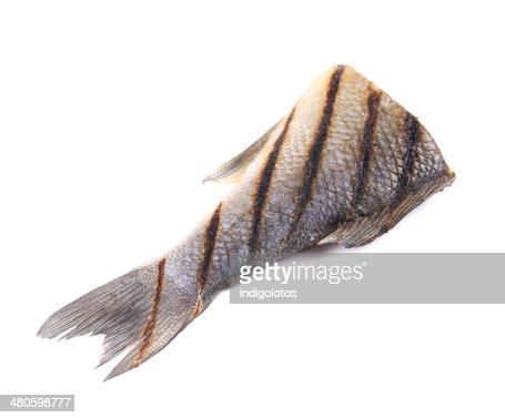 Fish tail. : Stock Photo