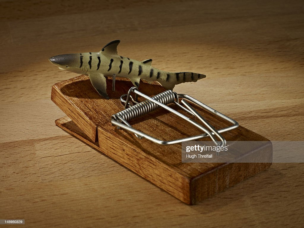 Fish trap : Stock Photo