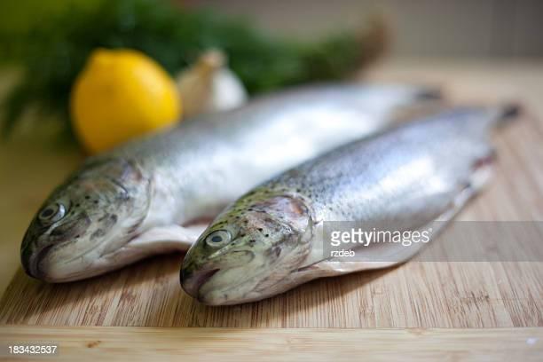 Fisch-Forelle Breeding