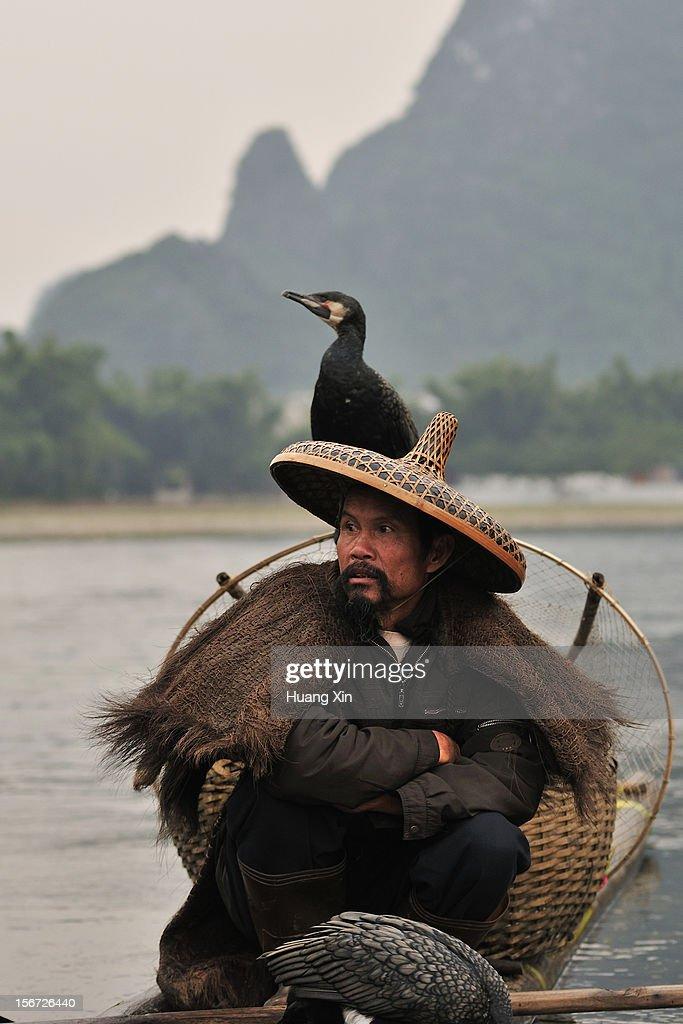 Fisherman and Cormorant on Li River : Stock Photo