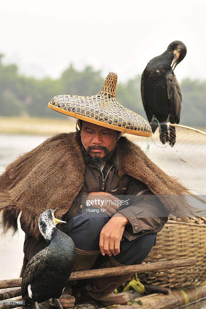 Fisherman and Cormorants on Li River : Stock Photo