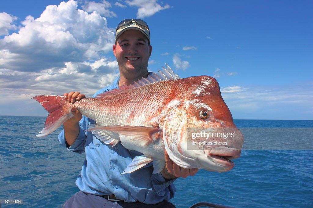Fisherman and Red Snapper Australia : Stock Photo