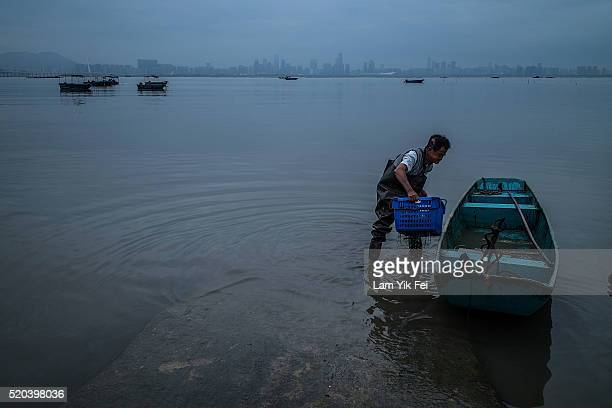 A fisherman carries a basket into his boat at Lau Fau Shan Fish Market with the backdrop of Shenzhen skyline on March 31 2016 in Hong Kong Hong Kong...