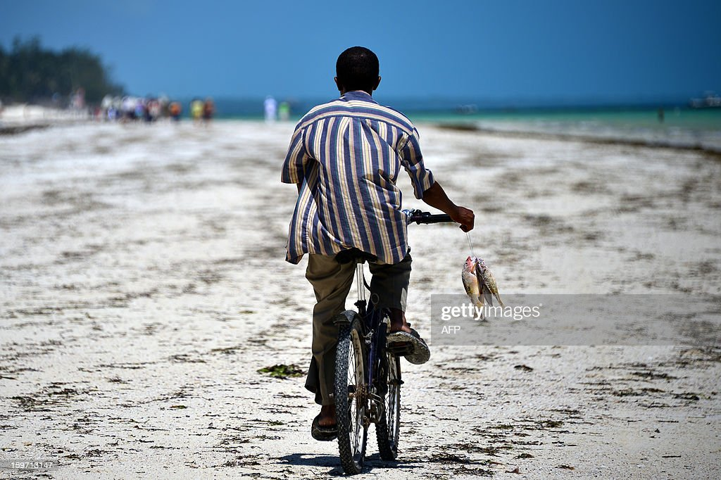 A fisherman carries fishes while riding a bicycle on a beach on January 8, 2013 in Zanzibar.