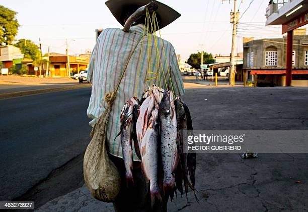A fisherman carries trouts for sale in a street in Nueva Italia state of Michoacan Mexico on January 17 2014 Mexican federal forces have taken over...