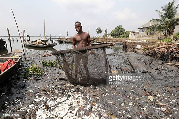 A fisherman displays his oil soaked fishing net on the polluted shoreline near a new house under construction with compensation money paid to the...