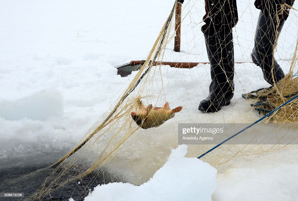 A fisherman fishes over the frozen 'Nazik Lake' in Ahlat District of Bitlis, Turkey on February 07, 2016. The lake's is being frozen about 50cm every winter season due to cold weather.