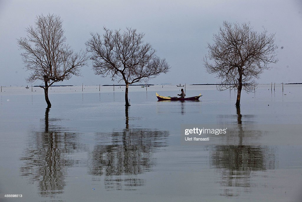 A fisherman passes near dead trees standing in flood waters from rising sea levels in Bedono village on December 12, 2013 in Demak, Central Java, Indonesia. Java's coastal villages have been particularly badly affected by rising sea levels as a result of global warming. Villagers refuse to leave there homes despite surrounding areas being submerged and signs of severe coastal erosion.