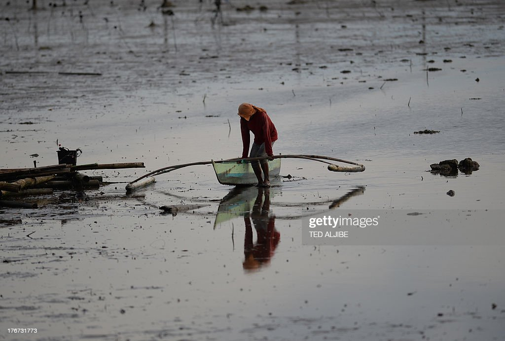 A fisherman pull his wooden boat as he wades through a mangrove area affected by an oil slick near the site of a ferry and freighter collision in Cordova town near Cebu City, central Philippines on August 18, 2013. Philippine divers hauled bodies out of rough seas August 18 in the grisly aftermath of a ferry disaster that claimed at least 38 lives, as oil leaked from the vessel, spreads for more than five kilometres (three miles) and into coastal villages, fishing grounds and mangroves. AFP PHOTO/TED ALJIBE