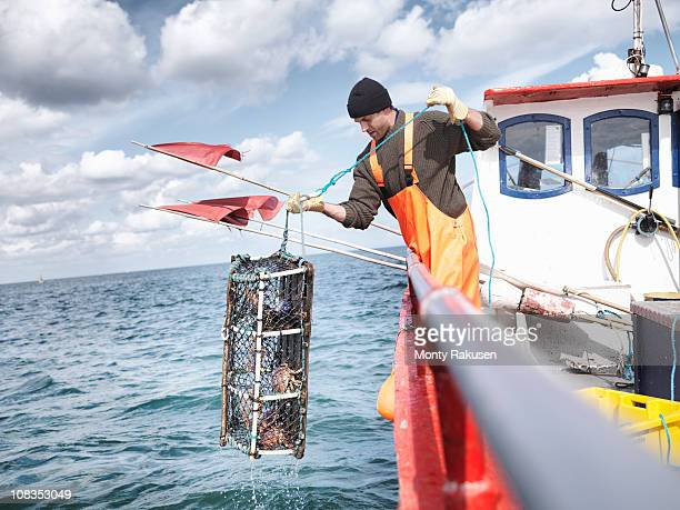 Fisherman pulling lobster pot with crabs