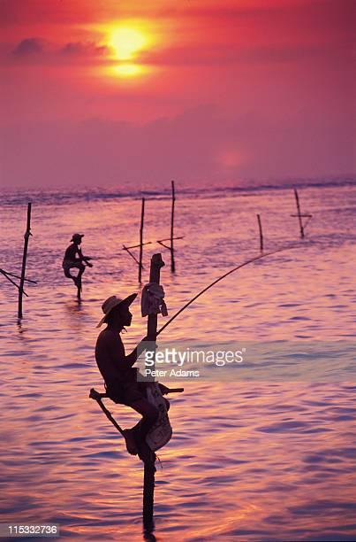 Fisherman, Welligama, Sri Lanka