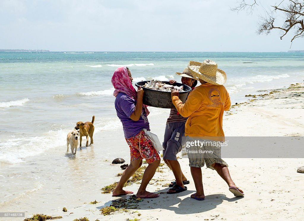 Fisherman's wives carry the freshly caught fish back to Tamiao village Bantayan Island The Philippines On November 6 2013 Typhoon Haiyan hit the...