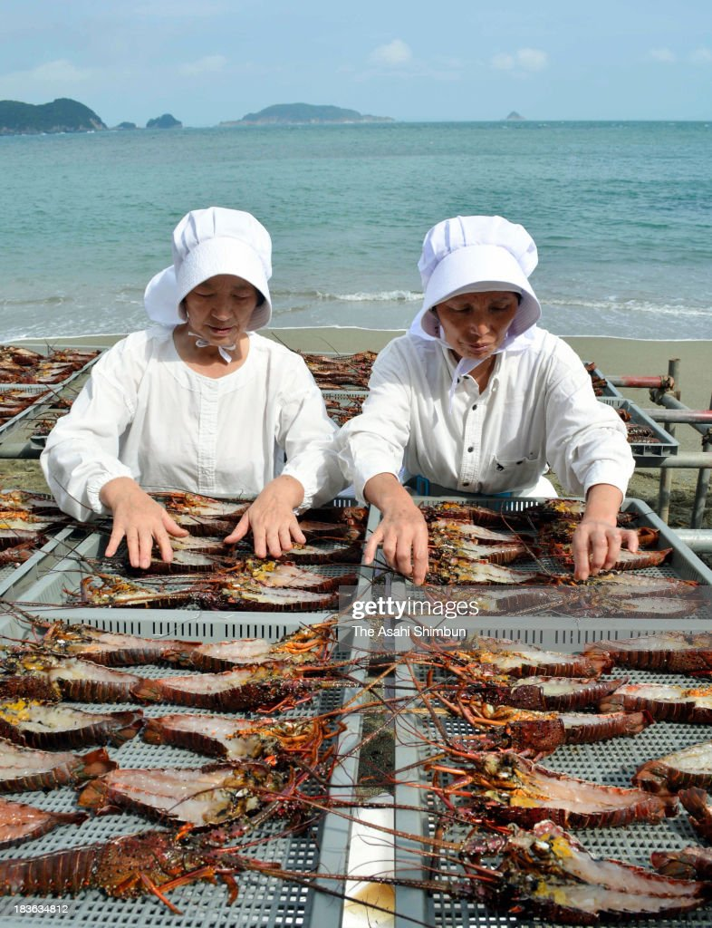 Fishermen and divers arrange 1,000 half choped Japanese spiny lobsters at a beach of Sugashima Island on October 8, 2013 in Toba, Mie, Japan. The dried 'Ultimate' lobsters will be distributed at a promotional event of the island on October 14 in Tokyo.