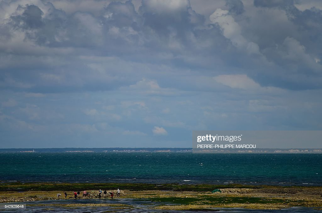 Fishermen are seen at the coast near the lighthouse of Saint Clement des Baleines on the Ile de Re island, western France, on June 25, 2016. / AFP / PIERRE