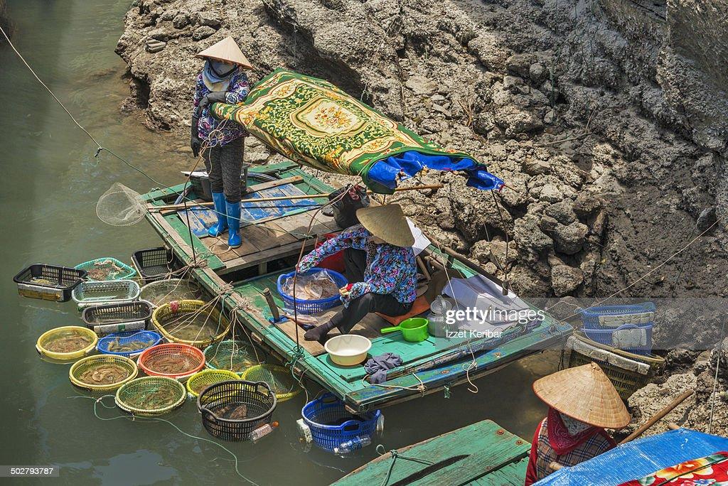 Fishermen at Ha Long bay, Vietnam