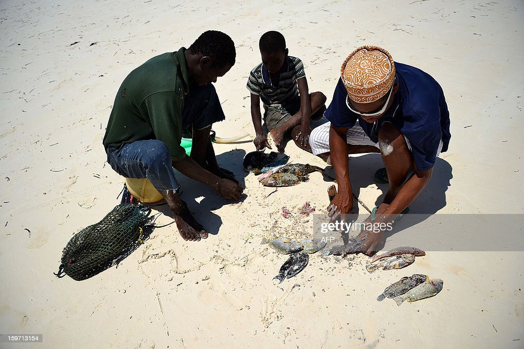 Fishermen clean their fishes on a beach on January 8, 2013 in Zanzibar. AFP PHOTO / GABRIEL BOUYS