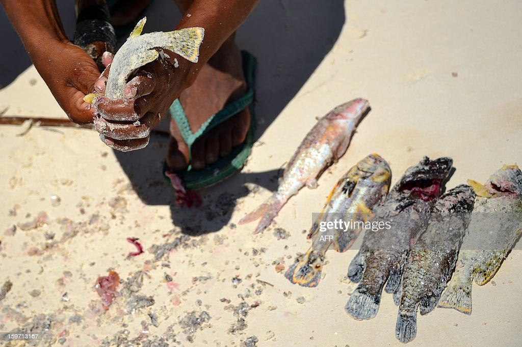 Fishermen clean their fishes on a beach on January 8, 2013 in Zanzibar. AFP PHOTO / GABRIEL BOUYS