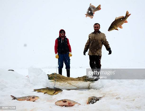 Fishermen fish over the frozen 'Nazik Lake' in Ahlat District of Bitlis Turkey on February 07 2016 The lake's is being frozen about 50cm every winter...