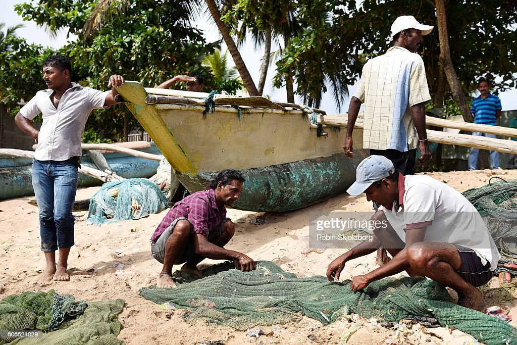 Fishermen gathering fish from net on beach
