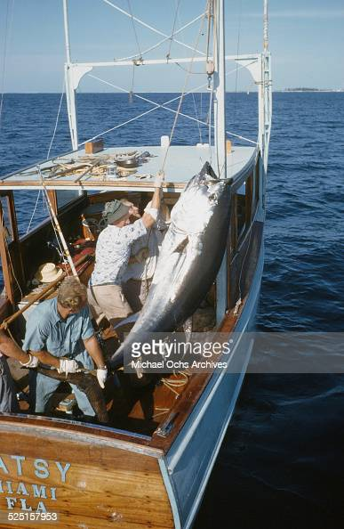 Deep sea fishing cat cay island bahamas pictures getty for Bahamas fishing license