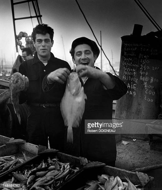 Fishermen in the harbour of Marseille 1951 in Marseille France