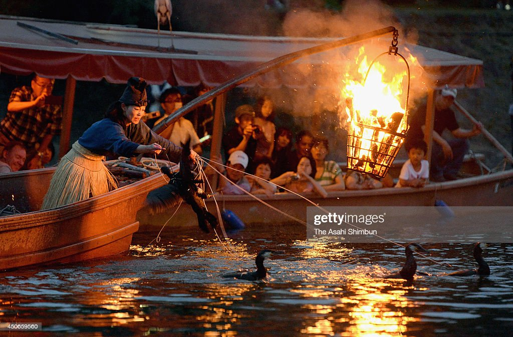 Fishermen, known as Cormorant Fishing Masters, use cormorant birds or 'U' during the 'Ukai' or cormorant fishing at Uji River on June 15, 2014 in Uji, Kyoto, Japan.