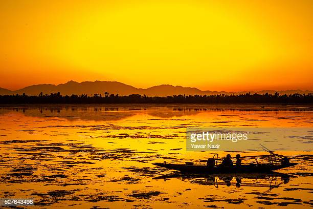 Fishermen resting in their Shikara boat are silhouetted against the setting sun Shikara at the Dal lake on May 03 2016 Srinagar the summer capital of...