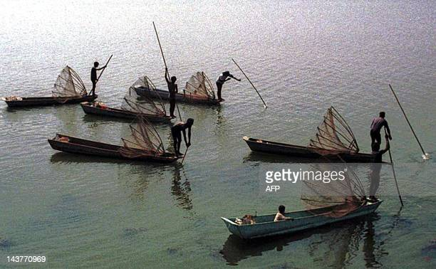 Fishermen search for a big catch at the upper lake in Bhopal early morning 09 May 2003 The fishermen who usually prefer to fish with at least a 200...