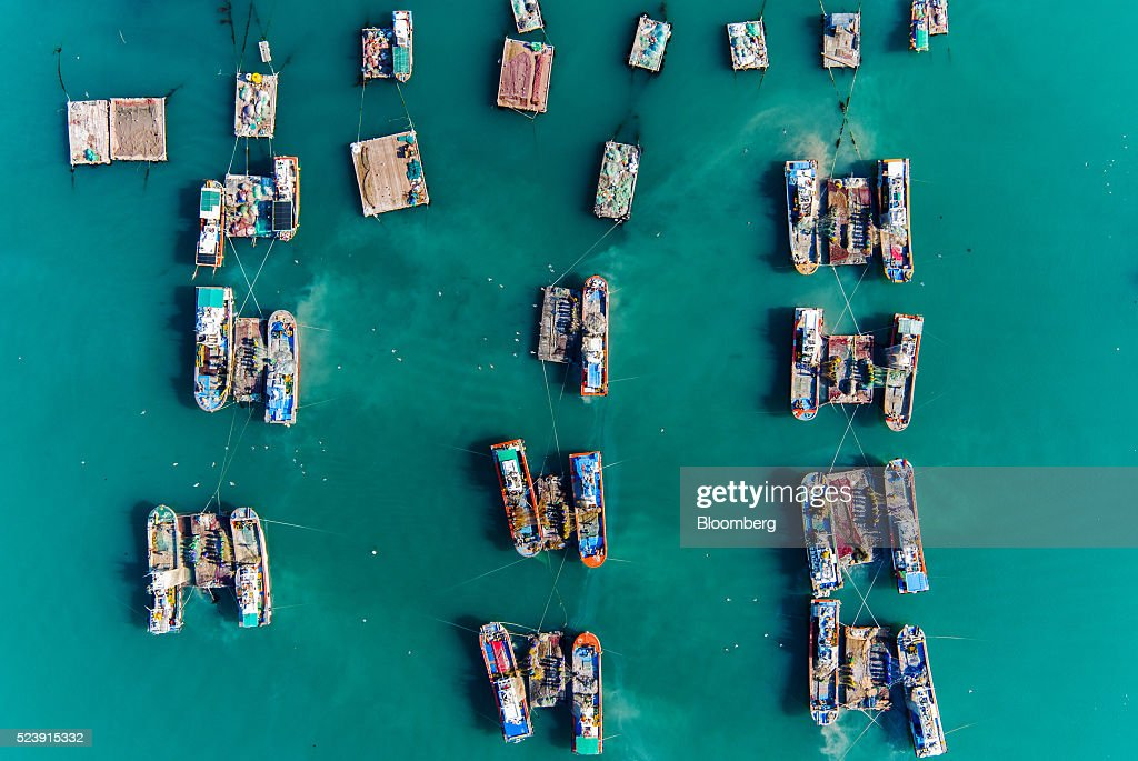 Fishermen separate anchovies from a net on a barge moored between two fishing boats in this aerial photograph above Mijo port in Namhae South Korea...