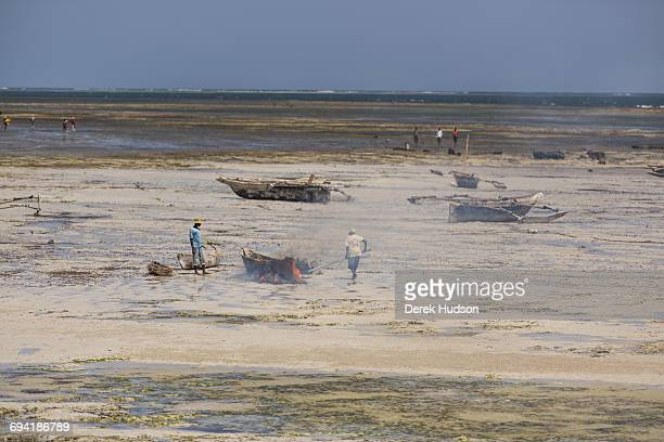 Fishermen set fire to dried palm leaves underneath the keel of a dugout canoe in order to burn off the algae deposit thereby reducing dragThe small...